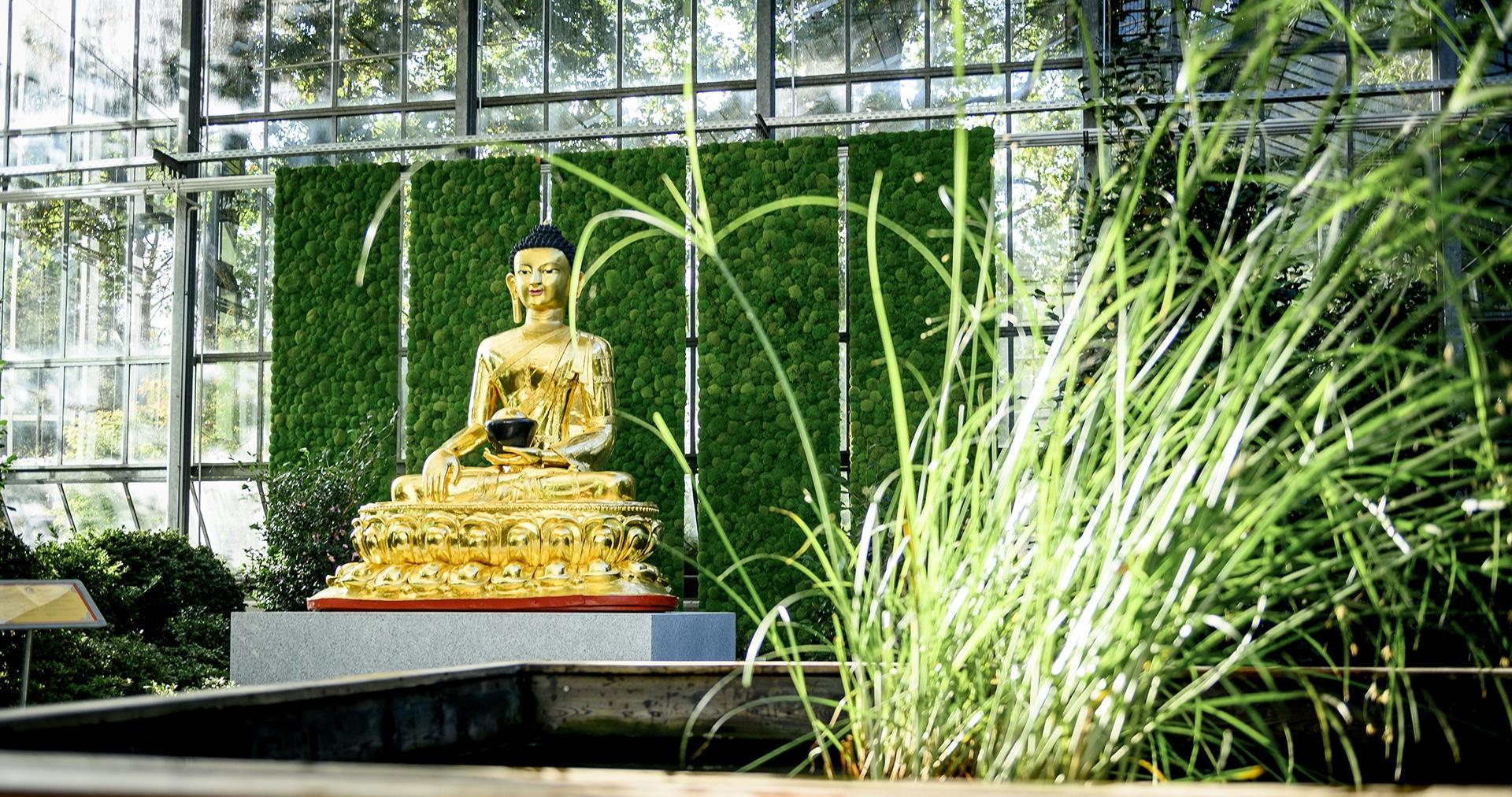 Buddah Botanika Bremen