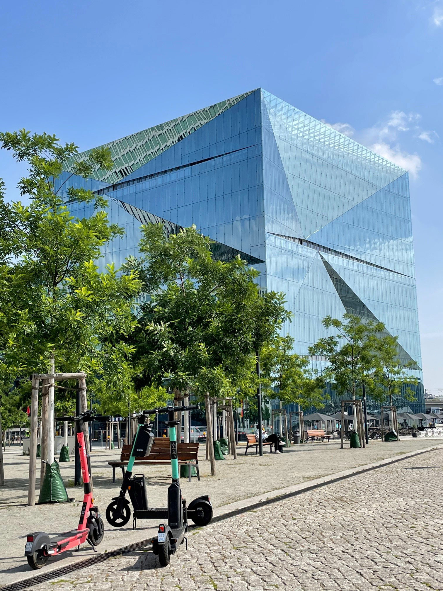"Stadtbäume unter ""Stress"": Junge Straßenbäume am Cube Berlin, einem würfelförmigen Bürogebäude vor dem Berliner Hauptbahnhof"