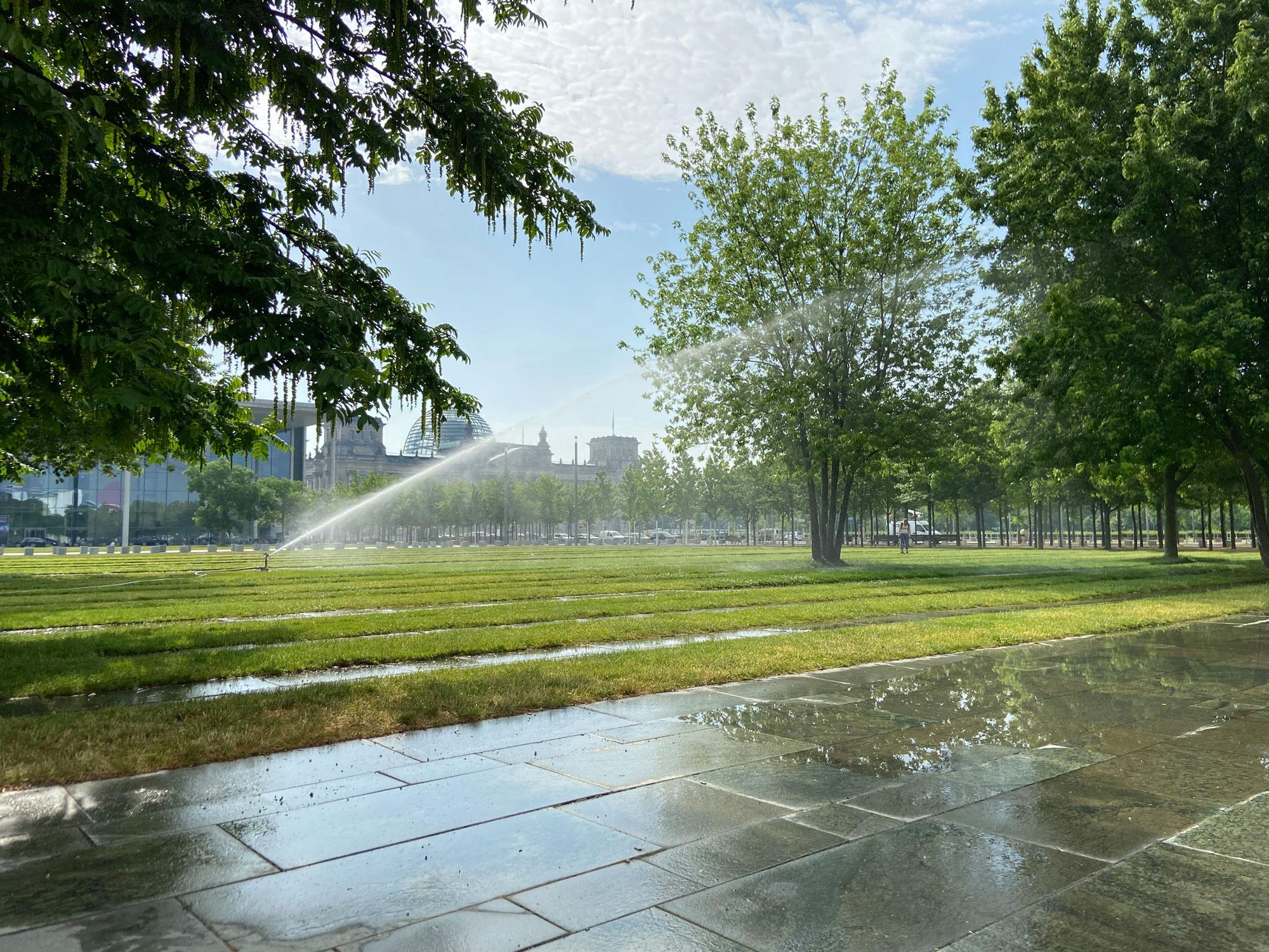 Stadtbäume vor Kanzleramt Berlin