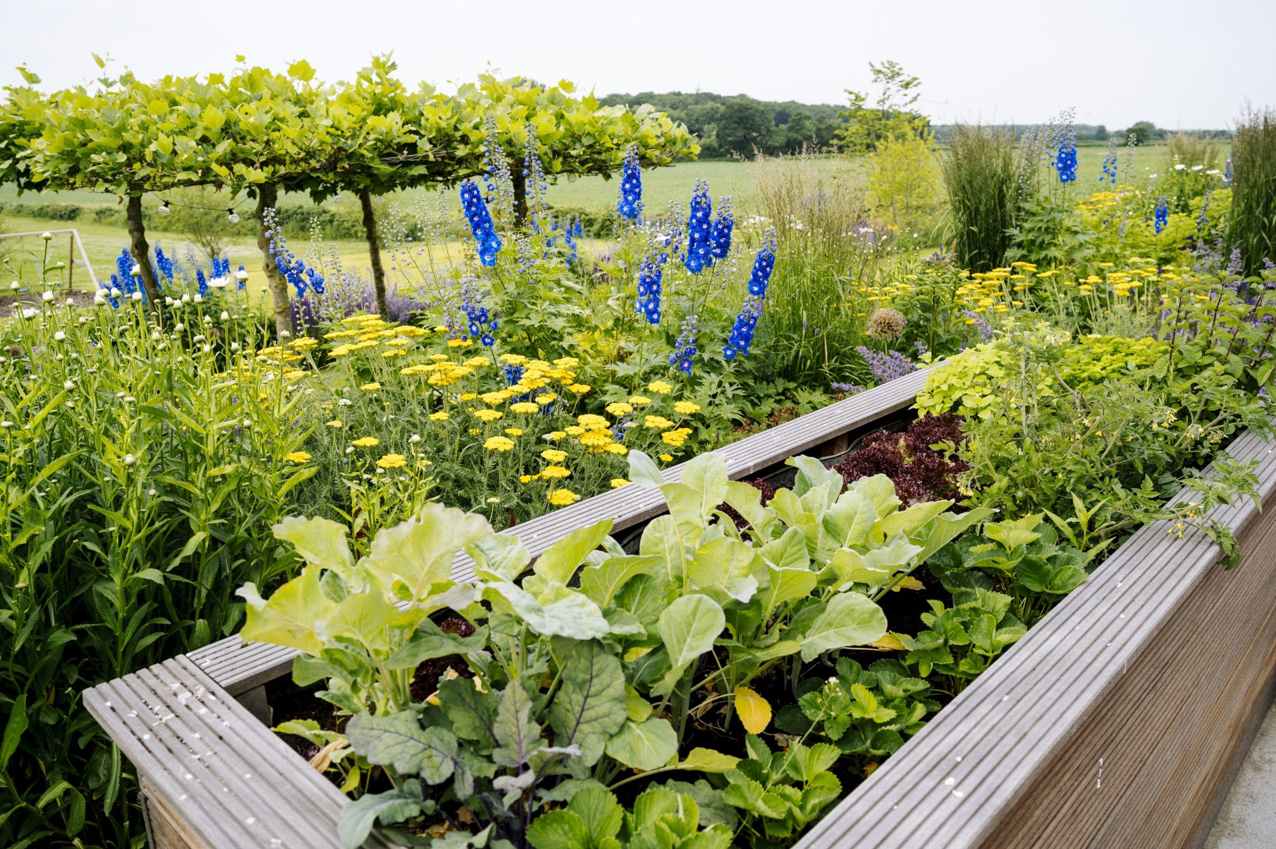 Nordfriesischer Garten made by Momsen